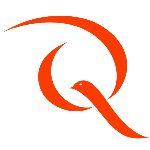 Quiddity Logo